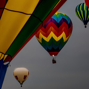 In flight by Anne Marie Hickey - Transportation Other