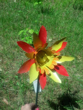 Photo: See:  My Art Gallery Three Dimensional Works  for more flowers aluminum $7