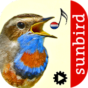 App Icon for Vogelzang Id - Automatische App in Czech Republic Google Play Store