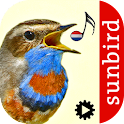 Vogelzang Id - Automatische icon