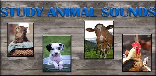 Приложения в Google Play – Обучение звукам животных
