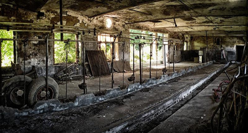 Desolation di GabrieleT