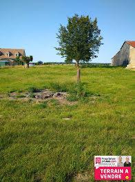 terrain à Notre-Dame-de-Bliquetuit (76)
