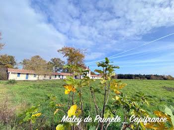 propriété à Cercoux (17)