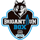Brigantium Box Download on Windows