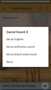 Camel Sounds - náhled