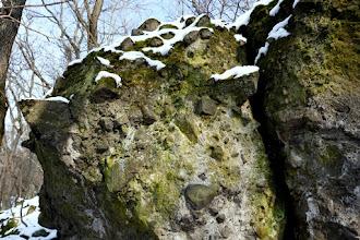 Photo: A Visegrádi-hegységre oly jellemző andezites breccsa, vulkáni agglomerátum sziklák az Asztal-kő alatt (D-Nyerges-hegy) .