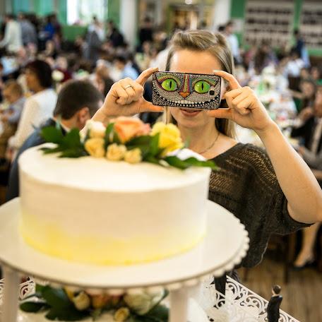 Wedding photographer Aleksey Snitovec (Snitovec). Photo of 30.12.2017