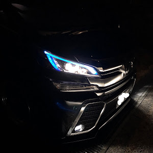 ヴェルファイア AGH30W Z-Gエディションのカスタム事例画像 黒ヴェーさんの2018年12月29日12:42の投稿