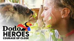 Dodo Heroes: Courage Up Close thumbnail