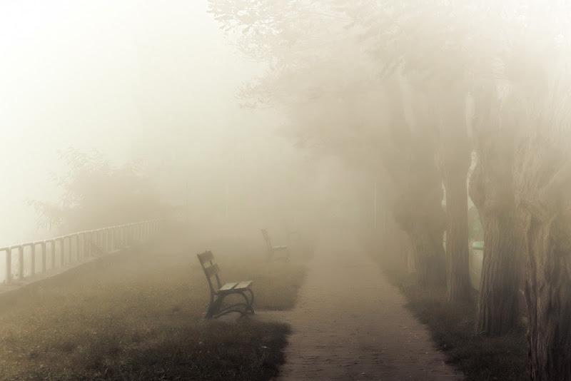 Nebbia Autunnale sul Fiume di Ro51