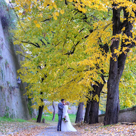 by Sasa Rajic Wedding Photography - Wedding Bride & Groom ( wedding photos destination, wedding photography, weddings, wedding, wedding dress, bride and groom, wedding photographer )