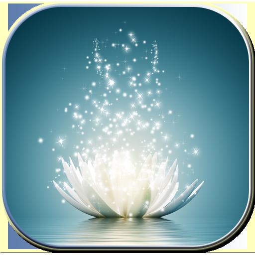 Magic water lilies