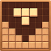 Block of Wood - Classic Puzzle Game icon
