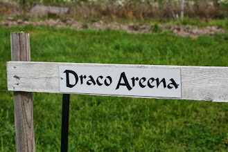 Photo: Didaktic's Draco has his own training place!