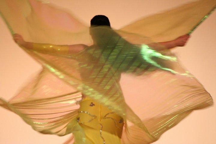 Danzatrice del ventre di paso