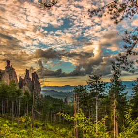 by Venelin Dimitrov - Landscapes Forests ( outdoor, sky, rock, forest, greenery, forest nature, trees, landscape, morning )