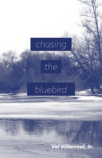 Chasing the Bluebird cover