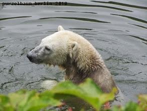 Photo: Ob sich im Wasser noch etwas findet ?