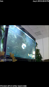P2PLiveCam screenshot 1