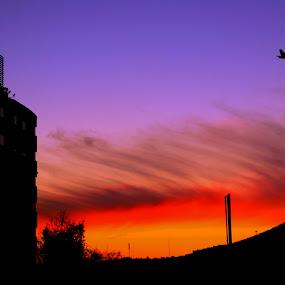 Sunset in the city  by Carlos Cardoso - City,  Street & Park  Skylines ( sunset, city )