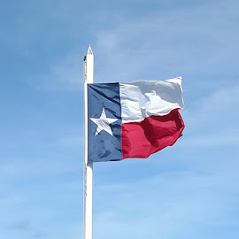 Texas by Sandra Barnes - Novices Only Objects & Still Life ( red, flag, objects, texas, white & blue, landscape )