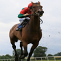 Horse Racing System icon