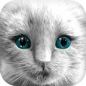 My Kitten (White Outfit) icon
