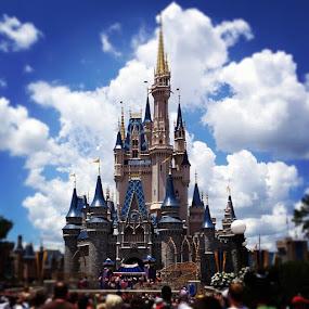 Good afternoon Disney! by Tyler Landgraf - Instagram & Mobile Instagram