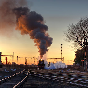 Early morning by Tony Wilson - Transportation Trains ( germiston, johannesburg, steam train, south africa, reefsteamers )