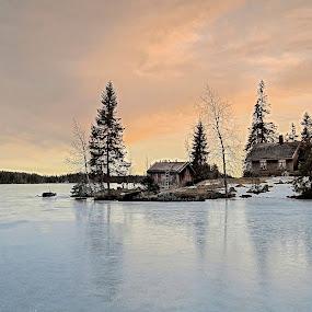 Jonsetangen by Svein Hurum - Landscapes Forests ( lake winter norway )