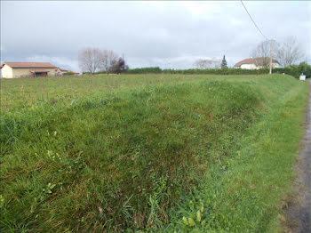 terrain à Viella (32)