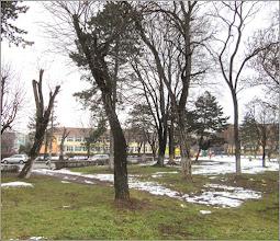 """Photo: Turda - Str. Rapsodiei, Nr.1 - Scoala  """"Avram Iancu""""  - 2019.01.26"""