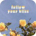 Yellow Aesthetic Wallpaper – HD Backgrounds icon