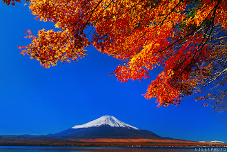 Photo: Fuji's Autumn.....