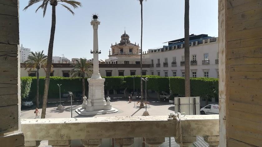 Cultura zanja la polémica: los árboles de la Plaza Vieja no se pueden quitar