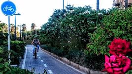 Carril bici en Almería.