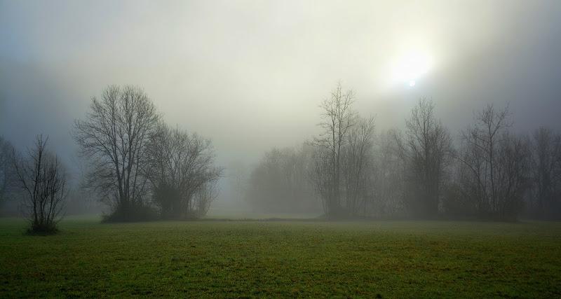 La nebbia che prelude al sole di gigidueelle