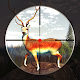Download Gun Deer Hunting For PC Windows and Mac
