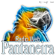 Rádio Pantaneira for PC Windows 10/8/7