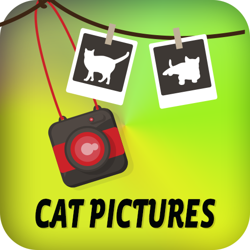娛樂App|猫の写真 LOGO-3C達人阿輝的APP