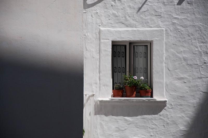 La finestra di Giomi