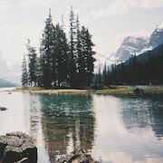 к чему снится купаться в озере