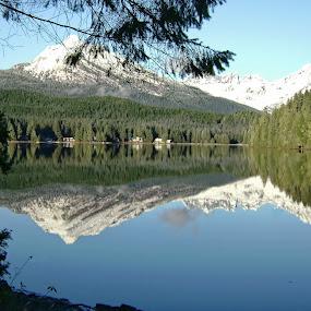 Auke Lake Juneau Alaska by Rev Marc Baisden - Landscapes Waterscapes ( reflections, alaska, travel, lake )