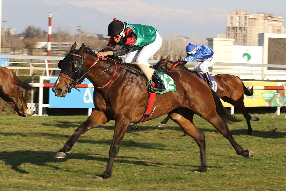 Aventura Chilena (Roman Ruler) se quedó con la victoria en Condicional (1600m-Pasto-CHS).
