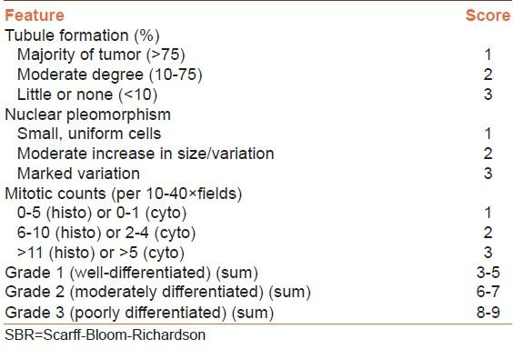 Image result for nottingham histologic score
