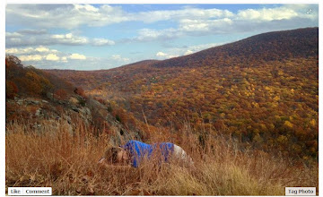 Photo: a little nap in the Hudson Highlands
