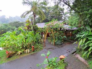 Photo: The restaurant at Lost Iguana