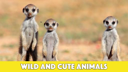 儿童趣味动物智力拼图
