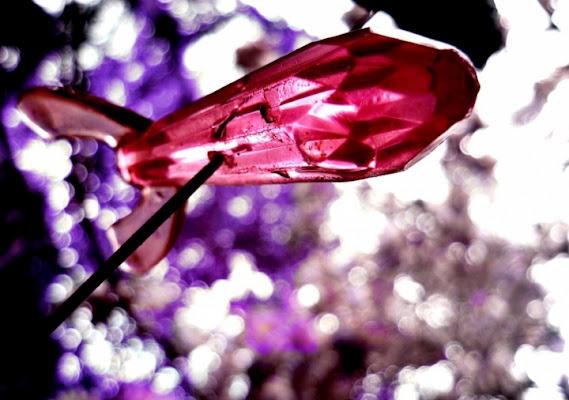 Purplespace di mosquita79